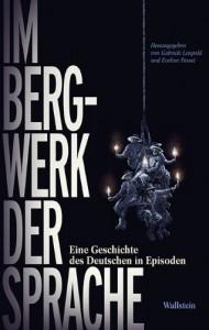 Una storia del tedesco per episodi